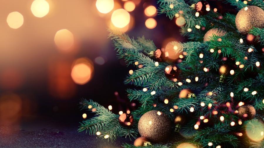 Albero di Natale, luci e decorazioni natalizie. Fuori sede in arrivo.